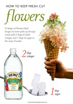 How to keep flowers fresh after they're cut.