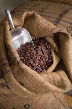 The New Chocolate Frontier - Colorado Homes and Lifestyles - January-February 2013, Ritual Chocolate, Denver, chocolate, cocoa beans