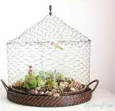 DIY wire succulent garden tutorial -Great year round plants!