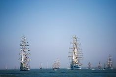 Massed tall ships