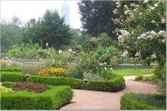 Atlanta Botanical Garden - Atlanta.  Check out the beautiful gardens of Atlanta!