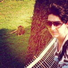 #leon #lion #cabarceno #awesome #cantabria #love #lionking #reyleon #sunglasses #me