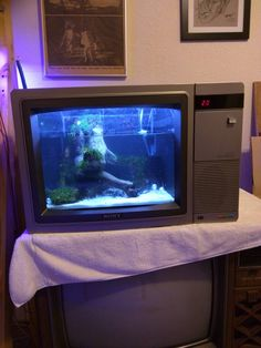 This was my first attempt at building my own aquarium. It isn't perfect but im pretty proud and I think it looks great. I call it the telarium.