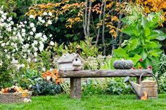 bench in outdoor room of autumn garden   thisoldhouse.com   from Late-Season Garden Sensation