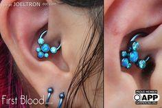 Anatometal gem cluster in daith piercing