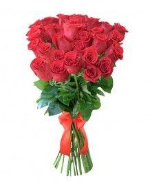 Buchete de trandafiri Buchet oferta 25 trandafiri de Ecuador