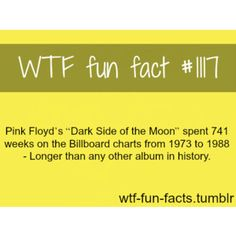 """wtf fun facts 
