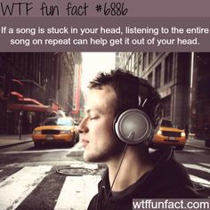 Young man listening to music on the street ,Music. Young man listening to music on the street , Wtf Fun Facts, Funny Facts, Awesome Facts, Random Facts, Devils Trap, Mind Blowing Facts, The More You Know, Music Industry, Noise Cancelling