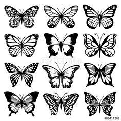 Vector: Butterfly Vector Set