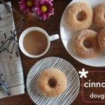 Baked Cinnamon Sugar Doughnuts // shutterbean