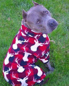 Christmas pitbull pajamas by Tooth&Honey