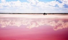 Romantic pink color!! Lake Las Coloradas at Yucatán Peninsula, Mexico