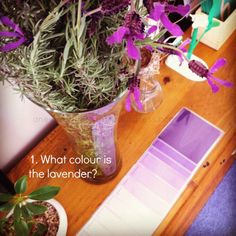 Reggio activities using colour swatches {An Everyday Story}