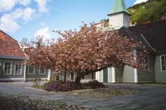 Leprosy Museum in Bergen from the outside. Come in May and see the cherry trees blossom!