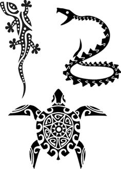 gecko, serpent, tortue                                                                                                                                                                                 Plus