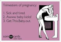 Trimesters of pregnancy