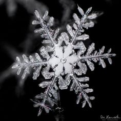 many photographers will try and capture the natural beauty of a snowflake by using a macro lens, not many are able to show it with crystal clear precision like Don Komarechka