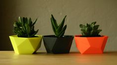 laurendy: Repurpose DIY: Mini Geometric Planters