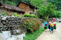 Tourism helps historic Ha Giang village prosper   Lung Cam Tren village in the northern mountainous province of Ha Giang has been positively transformed owing to Dong Van district's 2010 decision to develop it into a 'Cultural Village' in line with new style rural area regulations.   #vietnamtravelnews #vntravelnews #vietnamnews  #traveltovietnam #vietnamtravel #vietnamtour