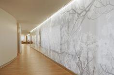 PW Corridor Graphic Wood Light White Healthcare