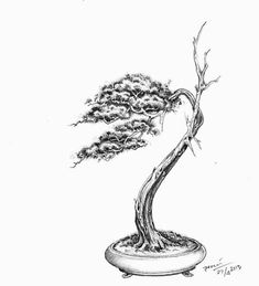This is a drawing by Rudi Julianto. Exceptional. I would love a copy of this. I definitely can't draw this well. Also an amazing Bonsai artist