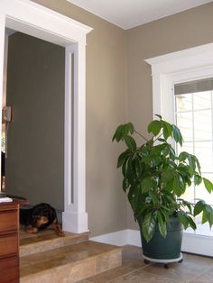7 Best Architrave Ideas Images Architrave Baseboards