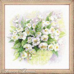 Акварельный жасмин (№4091) - Цветы - Aurora Borealis