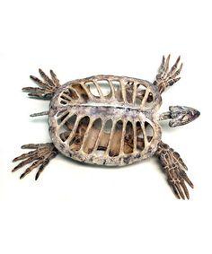 Look what I found on #zulily! Polyresin Turtle Skeleton Décor #zulilyfinds