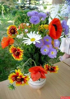 Share Pictures, Cool Pictures, Flower Aesthetic, Botanical Art, Flower Photos, Beautiful Flowers, Poppies, Floral Wreath, Awesome