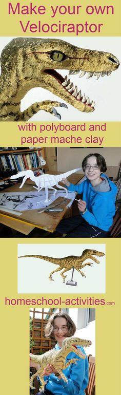Build a Velociraptor dinosaur model with paper mache clay. Fun ideas and activities from one of the very few second generation homeschooling families. www.homeschool-activities.com/make-a-dinosaur.html