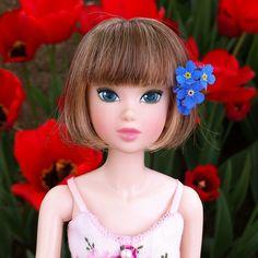 #momoko doll(모모꼬 인형) - @kyoungjin77- #webstagram