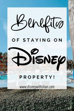 Free transportation, extra magic hours, deals and discounts, dining plan, and more are some of the reasons you should always consider staying on Disney property to have some extra magic on your vacation! #disney #disneytips #disneywallpaper #disneyworld