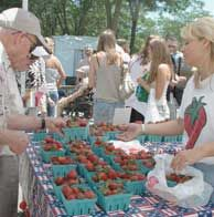 Strawberry Festival in Cedarburg
