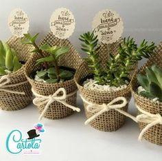 img.elo7.com.br product zoom 145A2E9 suculentas-cactus-decoradossuculentas-cactus-decorados-cha.jpg