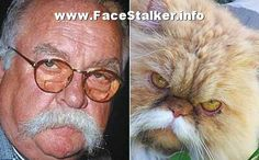 Celebrity Post-Mortem   http://www.mtv.com/news/articles/1682515/whitney-houston-final-autopsy ...