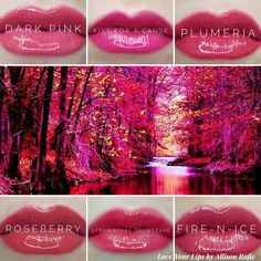 Dark Pink Fall LipSense #falllipsense #lipsense Love Your Lips by Allison Rafie Follow me on Instagram @luvurlips www.facebook.com/groups/loveyourlipsbyallisonrafie Distributer #328364