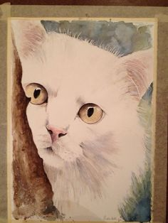 """Cucù "" Acquarello su carta #watercolor#acquerello#gatti#cat"