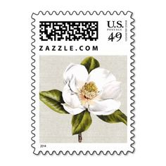 >>>Cheap Price Guarantee          	Elegant White Magnolia Postage Stamp           	Elegant White Magnolia Postage Stamp in each seller & make purchase online for cheap. Choose the best price and best promotion as you thing Secure Checkout you can trust Buy bestShopping          	Elegant White ...Cleck Hot Deals >>> http://www.zazzle.com/elegant_white_magnolia_postage_stamp-172525345903369235?rf=238627982471231924&zbar=1&tc=terrest