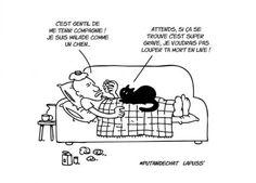 10-illustrations-qui-prouvent-que-les-chats-sont-des-creatures-vilaines11