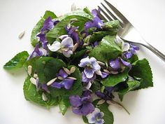 Veganize w/agave: Violet Salad. Violets were one of my Mom's favorite flowers...making this will make me smile. :) :)