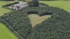 A widower's tribute to his adored wife, in the form of a heart-shaped meadow, has grown in secret in the Gloucestershire countryside, until being discovered by a hot air balloonist  The Daily Mail reportsthat after Winston Howes' wife Janet died 17 years ago at age 50, the farmer planted thousands of sapling oaks in a six-acre meadow in order to create a lasting memorial.  He left a heart-shaped area bare, marking the space with a large hedge. The point of the heart faces Jan