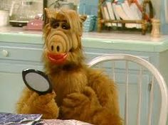 The Top 9 Episodes of ALF (a. the greatest TV show ever! Alf Tv Series, Movies And Series, Serie Tv, 80 Tv Shows, Great Tv Shows, Alien Life Forms, Tv Show Quotes, Movie Photo, Old Tv