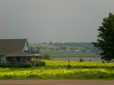 Prince Edward Island, this island was the inspiration for Anne of Green Gables and was one of the most beautiful places I've seen!