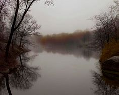 Central Park Photography, Rustic Decor, Brown Gray Fall, Pond, New York Print, Nature Photography
