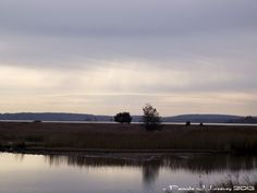 Daily Affirmations: My Sense of History  Photo: North Pool Overlook at the Parker River National Wildlife Refuge