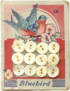 Vintage Bluebird button card