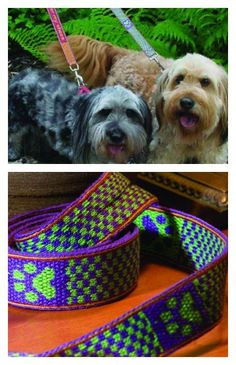 Cuteness alert! (And a free pattern!) These tablet-woven leashes are totally customizable and totally adorable. Click to get started! ~Andrea