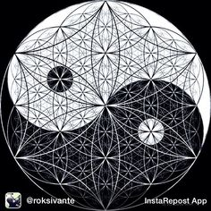 Repost from @roksivante via @igrepost_app Too dope not to repost from @huvvee #yinyang #sacredgeometry #fractals #design #psychedelic #wisdom #symbol #awesome #art