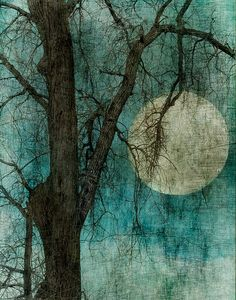 Moon in the tree. Don't know who the artist is, but have the feeling I may have pinned this before in Art Stuff.