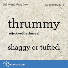 Dictionary.com's Word of the Day - thrummy - of or abounding in thrums; shaggy or tufted.